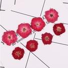 玫瑰花壓花,整朵壓制,一包12朵