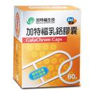 【加特福】乳鉻膠囊200mcg 60s/盒*2盒(組合價)