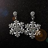 耳環 925純銀鑲鑽-雪花造型生日情人節禮物女耳針73gt221【時尚巴黎】