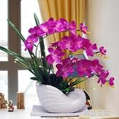 蝴蝶蘭仿真花套裝擺件家居客廳室內茶幾電視柜假花盆栽裝飾花擺設