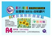 ◆全館免運費◆ 3361 彩膠囊 彩色噴墨全透明速乾自黏膠片貼紙X1包