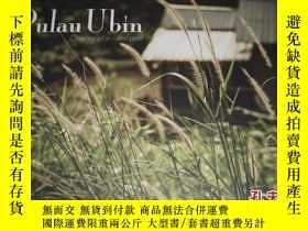 二手書博民逛書店Pulau罕見Ubin : Charms of a rural