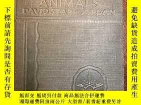 二手書博民逛書店Manual罕見of the vertebrate animal