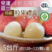 家購網嚴選 大樹牛奶玉荷包特級粒果禮盒5台斤(120-125顆/盒)【免運直出】