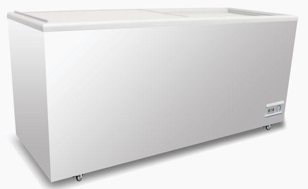 歐規 ACFA 玻璃式冷凍櫃【6尺冰櫃】型號:NI-638
