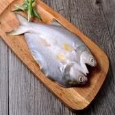 午仔魚250g±10%