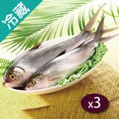台灣虱目魚(500~600G/尾)X3【愛買冷藏】