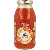有機尼諾 有機番茄醬 500g/瓶