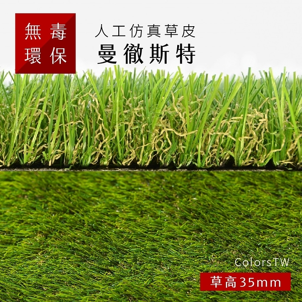 人工仿真草皮 【曼徹斯特】 尺寸1X1m 人工草皮 人造草皮 拼接 園藝 景觀