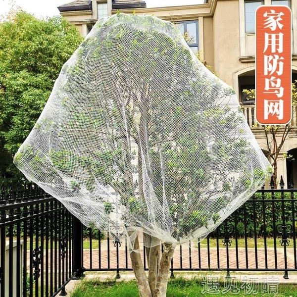 防鳥網防鳥用網園花園果樹櫻桃家用戶外西紅柿防護果樹罩樹網 【快速出貨】