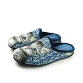 Grünland  懶人鞋 休閒鞋 貓咪 藍色 女鞋 CI2206 no004