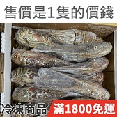 饕客食堂 冷凍 尼加拉瓜 生龍蝦 460-520g/尾 海鮮 水產 生鮮食品