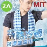 【南紡購物中心】【藻土屋】夏日清爽急凍沁涼巾(2入組)