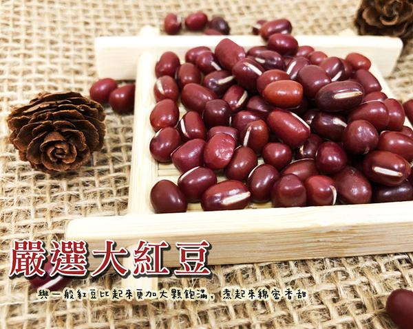 紅豆 嚴選超大紅豆 600克 好煮 綿密 超香 紅豆 台灣生產 【正心堂】
