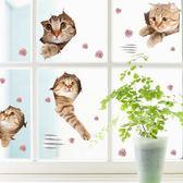 【BlueCat】愛玩貓咪搓破拉門組合壁貼 貼紙