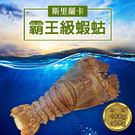 【屏聚美食】斯里蘭卡巨無霸蝦蛄(400g...