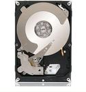 Seagate 3TB (ST3000NM0005)【企業級儲存碟】128MB/7200轉/五年保【刷卡含稅價】