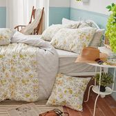 床包被套組 / 雙人加大【南法蝶花】含兩件枕套  60支天絲  戀家小舖台灣製AAU312