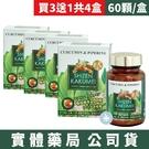 【買3送1共4盒-專區】自然革命 濃縮秋薑黃EX 60顆/盒