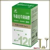 ★優品購健康★ 港香蘭 冬蟲夏草菌絲體膠囊 120粒