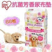 *KING WANG*【單包】IRIS《抗菌芳香尿布墊IR-US-88F》88入 寵物尿布墊