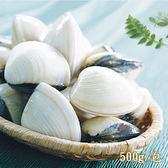 新鮮市集 真空熟凍大顆文蛤(500g/包)