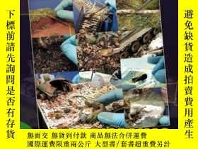 二手書博民逛書店Static罕見model manual 13 Diorama – Elements in combat-靜態模型