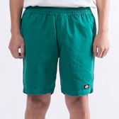 Dickies 中低腰抽繩短褲 綠 WDP19111