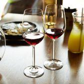 紅酒杯 高腳杯 葡萄酒杯 玻璃杯 2支套裝