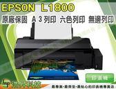 【加碼送千元禮券】EPSON L1800 原廠連續供墨印表機