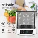 果蔬凈化機家用多功能消毒洗菜機自動水果蔬菜解毒機   【全館免運】