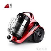 小型家用吸塵器靜音強力大功率洗層除螨蟲無耗材吸塵機D-9002      芊惠衣屋 igo