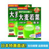 【海洋傳奇】【日本出貨】 山本漢方 大麥若葉青汁粉 22入 【2包組合】