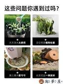 家用自動吸水懶人花盆栽種菜神器家庭陽臺長方形塑料種植箱【淘夢屋】