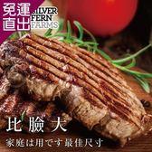 勝崎生鮮 紐西蘭銀蕨PS熟成巨無霸沙朗牛排~比臉大4片組 (450公克±10%/1片)【免運直出】