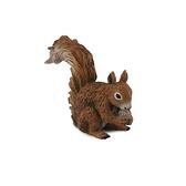 【永曄】collectA 柯雷塔A-英國高擬真動物模型-野生動物系列-松鼠