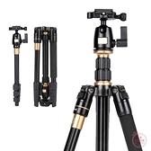 三腳架 Q555適用佳能尼康三腳架單反相機便攜旅游三角架攝影云臺支架-快速出貨