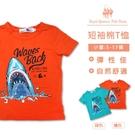 男童短袖上衣 鯊魚圖T*2色[6259] RQ POLO 春夏 童裝 小童 5-17碼 現貨