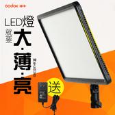 【大全配】Godox 神牛 LEDP260C LED雙色溫平板燈(含2顆大容量電池+座充)