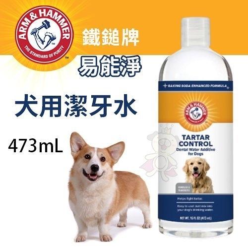 *KING*ARM&HAMMER鐵鎚牌 易能淨 犬用潔牙水473mL‧深層清潔牙齒‧犬用