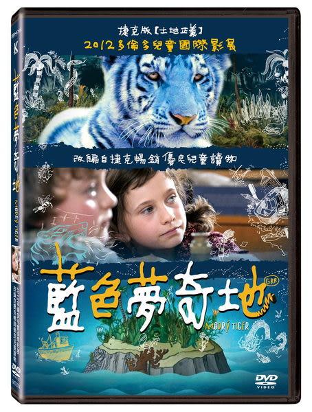 藍色夢奇地  DVD (音樂影片購)