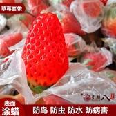 防鳥袋 草莓套袋專用袋無花果袋櫻桃袋育果小蠟袋車厘子防蟲防鳥防水 VK70