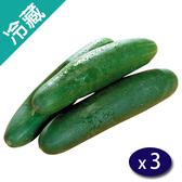 台灣胡瓜(600g±5%/條)X3【愛買冷藏】