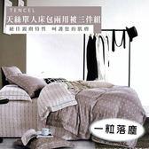 天絲/專櫃級100%.單人床包兩用被套組.一粒落塵/伊柔寢飾