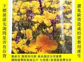 二手書博民逛書店healing罕見with medicinal plants of the westY19139 james