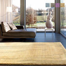范登伯格-絲絨☆柔暖系列長毛地毯-共四色-140x200cm