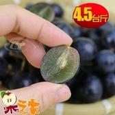 【南紡購物中心】【果之家】苗栗卓蘭特級巨峰葡萄4.5台斤裝