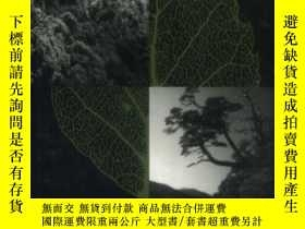 二手書博民逛書店The罕見Ecology And Biogeography Of Nothofagus Forests-白楊林的生