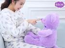 【60公分】浪漫薰衣草紫色熊娃娃 蝴蝶結絲帶 熊玩偶 抱枕 情人節 告白 聖誕節交換禮物