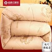 被子 加厚保暖雙人被子冬被冬天棉被被芯10斤冬季絲棉太空被12棉質-10週年慶